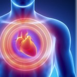 heart health and disease prevention by dr. bikram dhillon